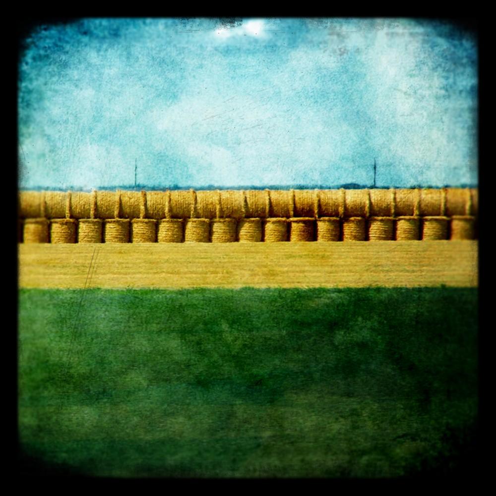 quintessential prairie